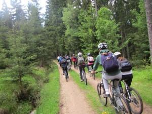 Fietsen door Tsjechische bossen