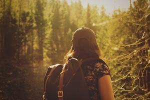 Wandelen door sprookjesachtige bossen